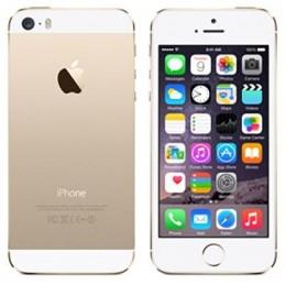 iPhone 5S 64Gb Gold Usato Grado A Garanzia 1 anno