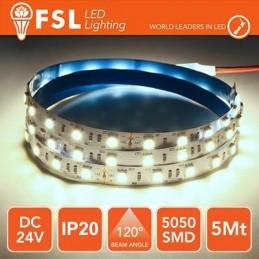 Striscia LED 5m IP20 5050 24V - 12W/m 60led/m 6500K